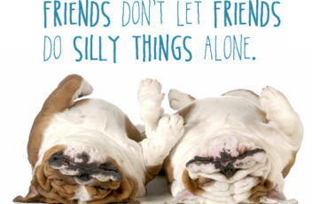 Silly Friends